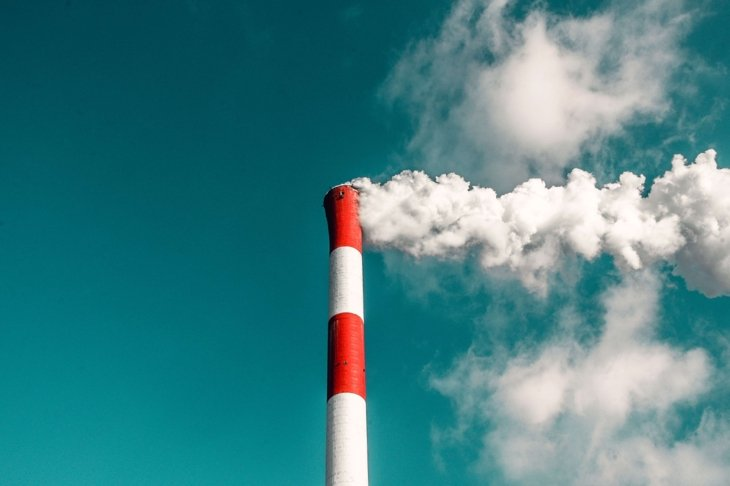 6 Common Environmental Toxins and How to Avoid Them: A Shortlist
