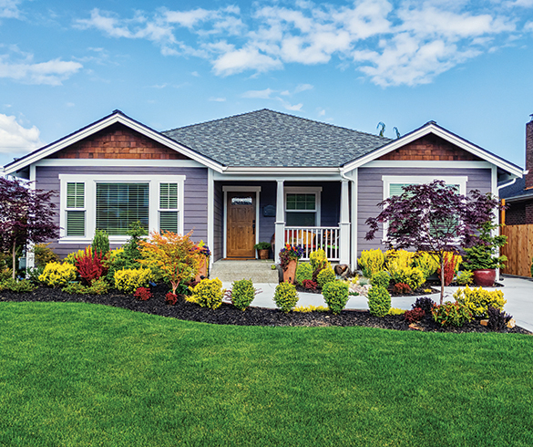 Spruce Up for Spring: Fresh ideas for home upgrades - 15687
