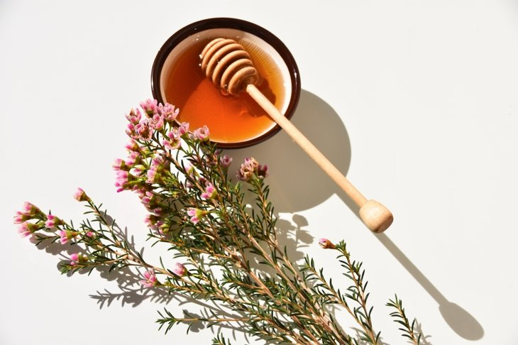 What You Need to Know About Manuka Honey\'s Immunity Benefits