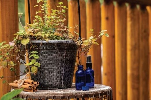 The Top 9 Antiviral Essential Oils