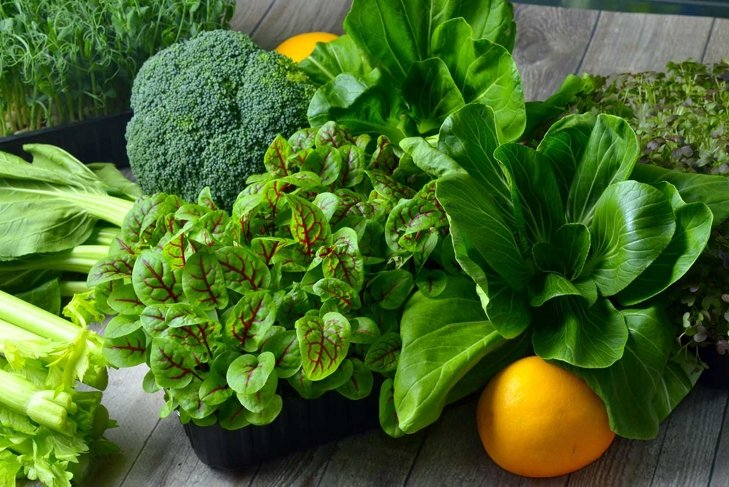 Broccoli, Cos Lettuce and Baby Spinach Leaves in arrangement.